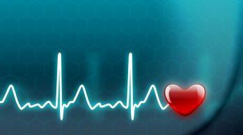 Sağlığın Önemli Olma Sebepleri